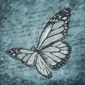 butterfly-998295_640.jpg