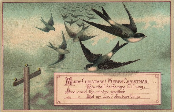 vintage_holiday_cards_birds_-_Google_Search.jpg
